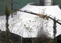 Factory Foundry Gates thumbnail